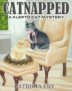 Catnapped Photo